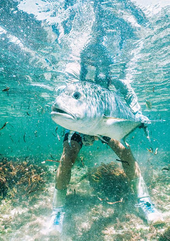 Cosmoledo Atoll, Seychelles
