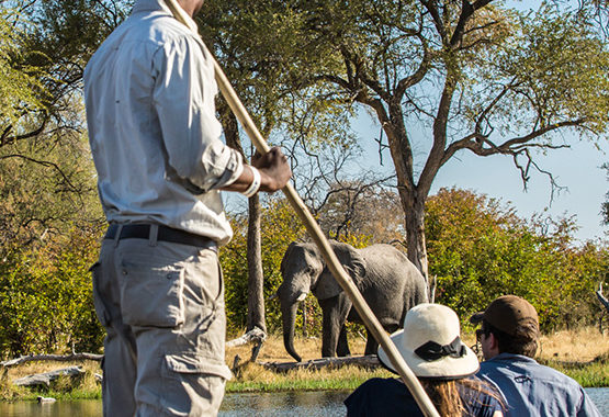 Okavango Delta Safari Package