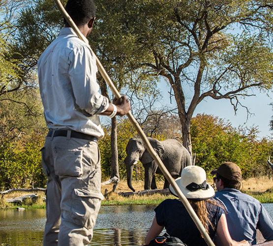 Okavango Delta Safari Package