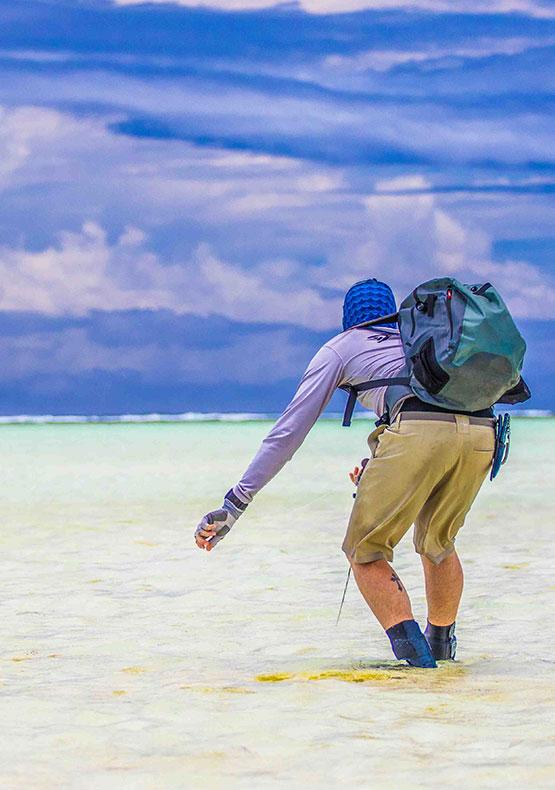 Alphonse Island Seychelles