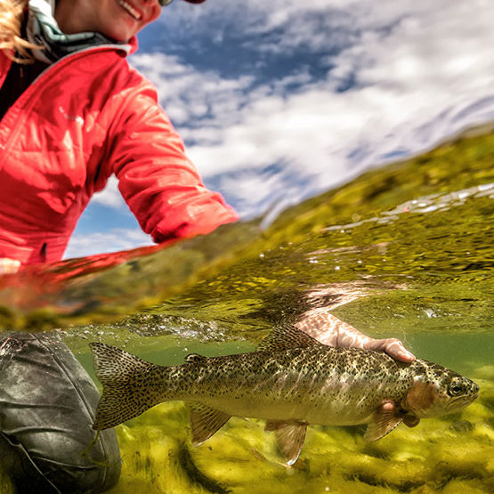 an underwater shot of a female freshwater angler releasing a rainbow trout at Northern Patagonia lodge, Argentina
