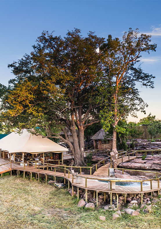 Deteema Springs camp Hwange National ParkZimbabwe