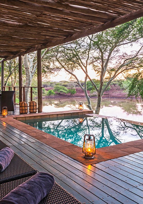 A view from the deck overlooking an infinity pool toward the waterhole at Bayete Zulu Private