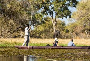 mokoro safari in the okavango