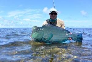 an angler lifts a bumphead parrotfish that was caught on fly on Providence Atoll, Seychelles