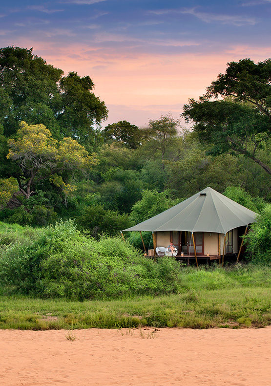 ngala tented luxury tent