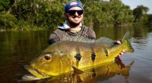 a trophy peacock bass from colombia