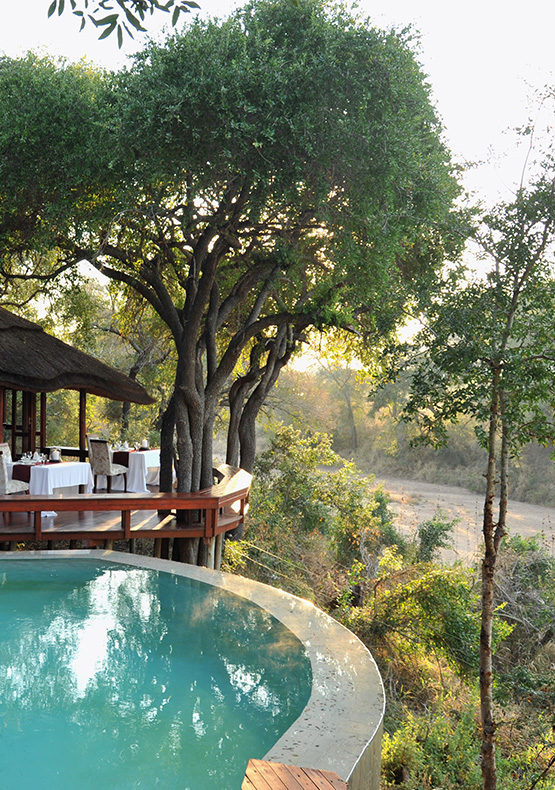 The lodge pool at imbali safari lodge