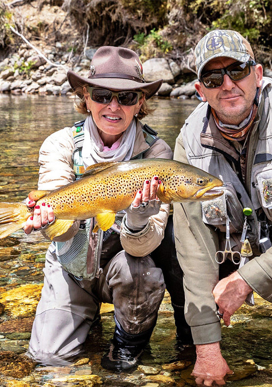 Butter yellow brown trout in New Zealand