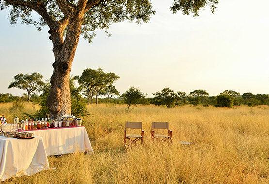 south african safari food